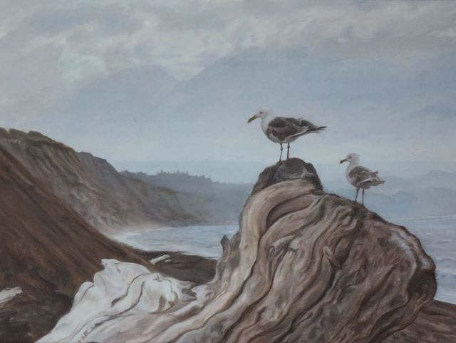 Gulls at Dungeness Spit